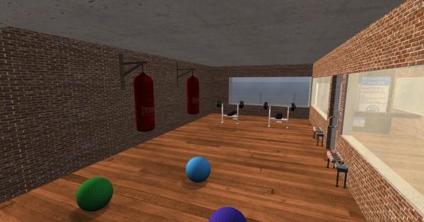 yoyogym1 balls and weights_001