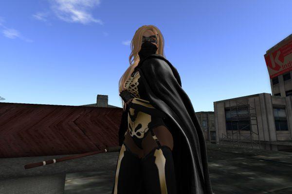Masked Vigilante Patrolling Hathian?